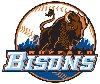 Thumbnail for Bisons Greeting