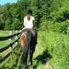 Thumbnail for Out Horseback Riding