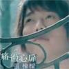 Thumbnail for tong che xin fei