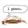 Thumbnail for honda commercial with crab