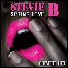Thumbnail for Spring Love (Stevie B)